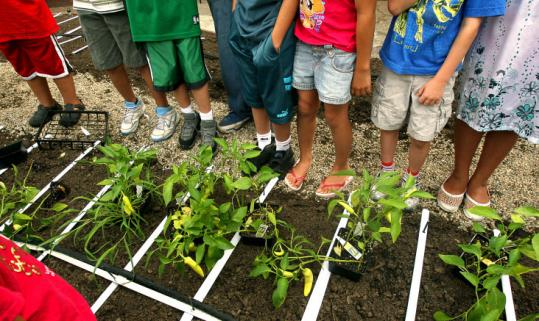 students feet at Ford SchoolGarden